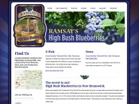 Ramsay's High Bush Blueberries