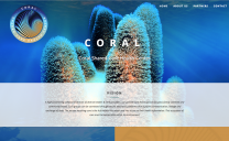 Coral Shared-Care Health Center Design